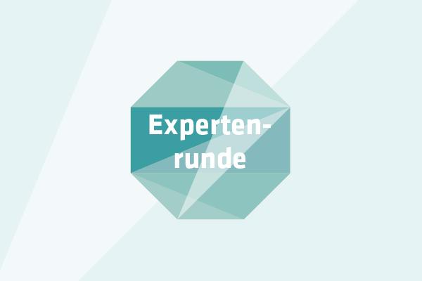 Die Expertenrunde von HANDWERKhochN - Nachhaltigkeit in Handwerksbetrieben stärken!